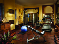 ОАЭ. Дубай. Madinat Jumeirah. Talise Spa. Gym