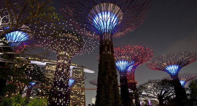 Блог Павла Аксенова. Night view of The Supertree Grove at Gardens by the Bay. Фото Jaroon Ittiwannapong - Depositphotos