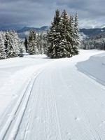 Freshly groomed empty cross-country ski track at French Alps. Фото Dmitry Naumov - Depositphotos