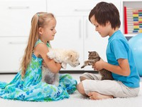 Давай знакомиться! Kids with their pets - dog and cat. Фото  ilona75 - Depositphotos