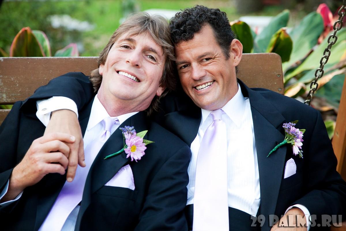 Геи на свадьбе