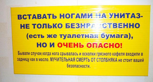 Блог Павла Аксенова. О белом друге. Фото dtopic.lt