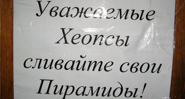 Блог Павла Аксенова. О белом друге. Фото liveinternet