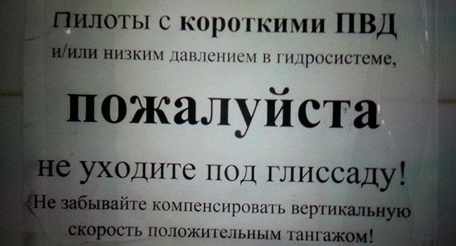 Блог Павла Аксенова. О белом друге. Фото s.66.ru