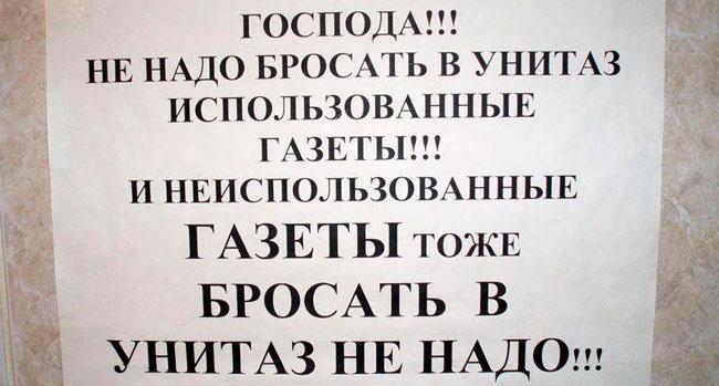 Блог Павла Аксенова. О белом друге. 2krota.ru