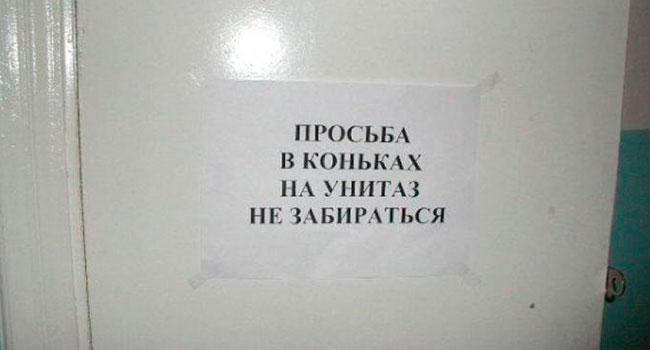 Блог Павла Аксенова. О белом друге. Фото napirse.ru