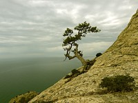 Крым. Walking in the autumn Crimea. Фото kyslynskyy - Depositphotos