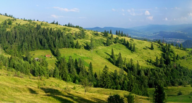 Блог Павла Аксенова. Ностальгия. Украина. Carpathian mountains, Ukraine. Фото katatonia82 - Depositphotos