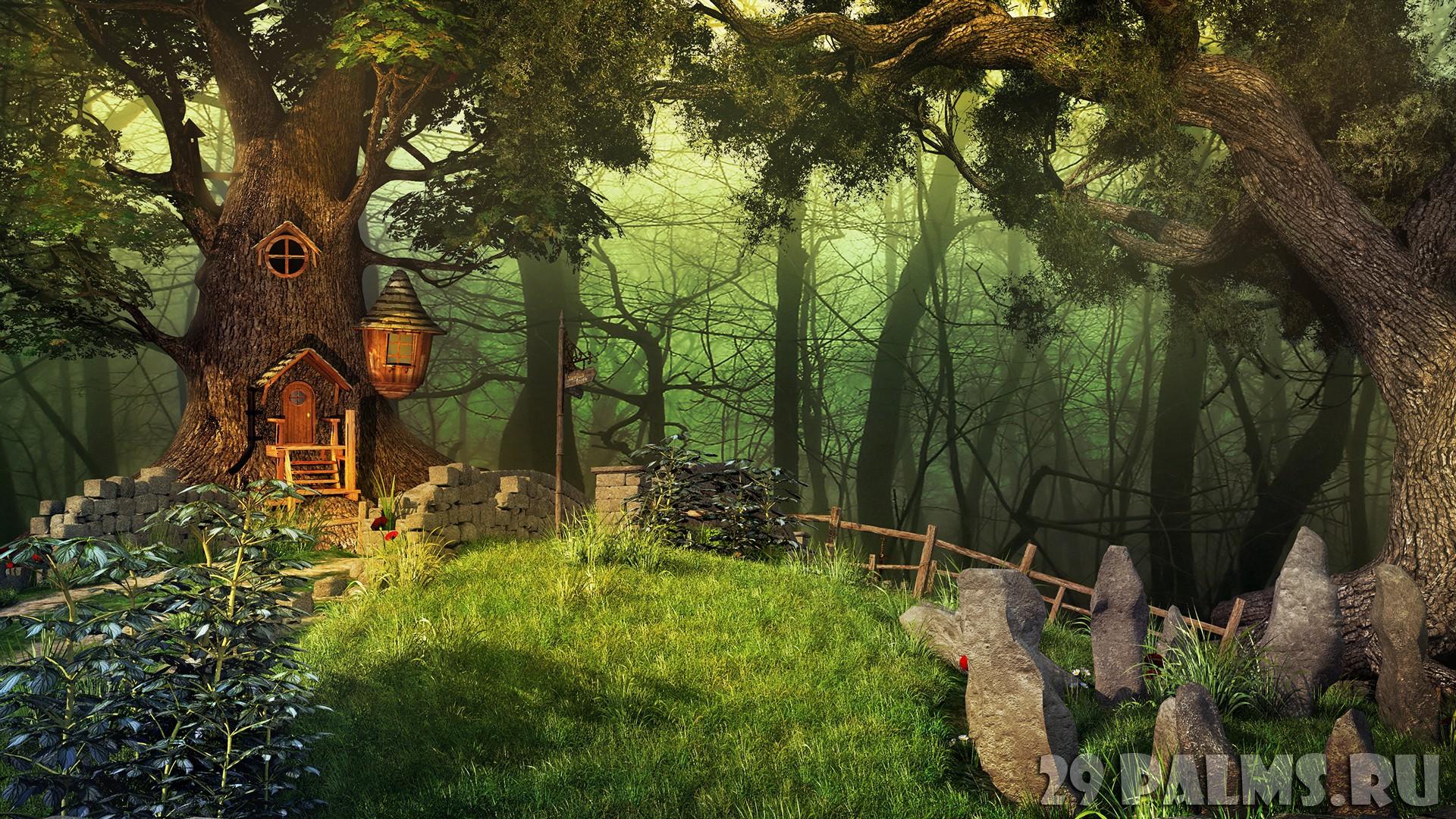 Волшебный лес обои на рабочий стол 6