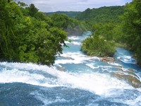 Мексика. Agua Azul waterfalls blue water river in Mexico. Фото lunamarina - Depositphotos