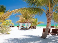 Мексика. Beach beds among palm trees at perfect tropical coast on Holbox island in Mexico. Фото shalamov - Depositphotos