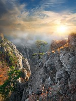Крым. Fog in the mountains in sunny morning. Фото Givaga - Depositphotos
