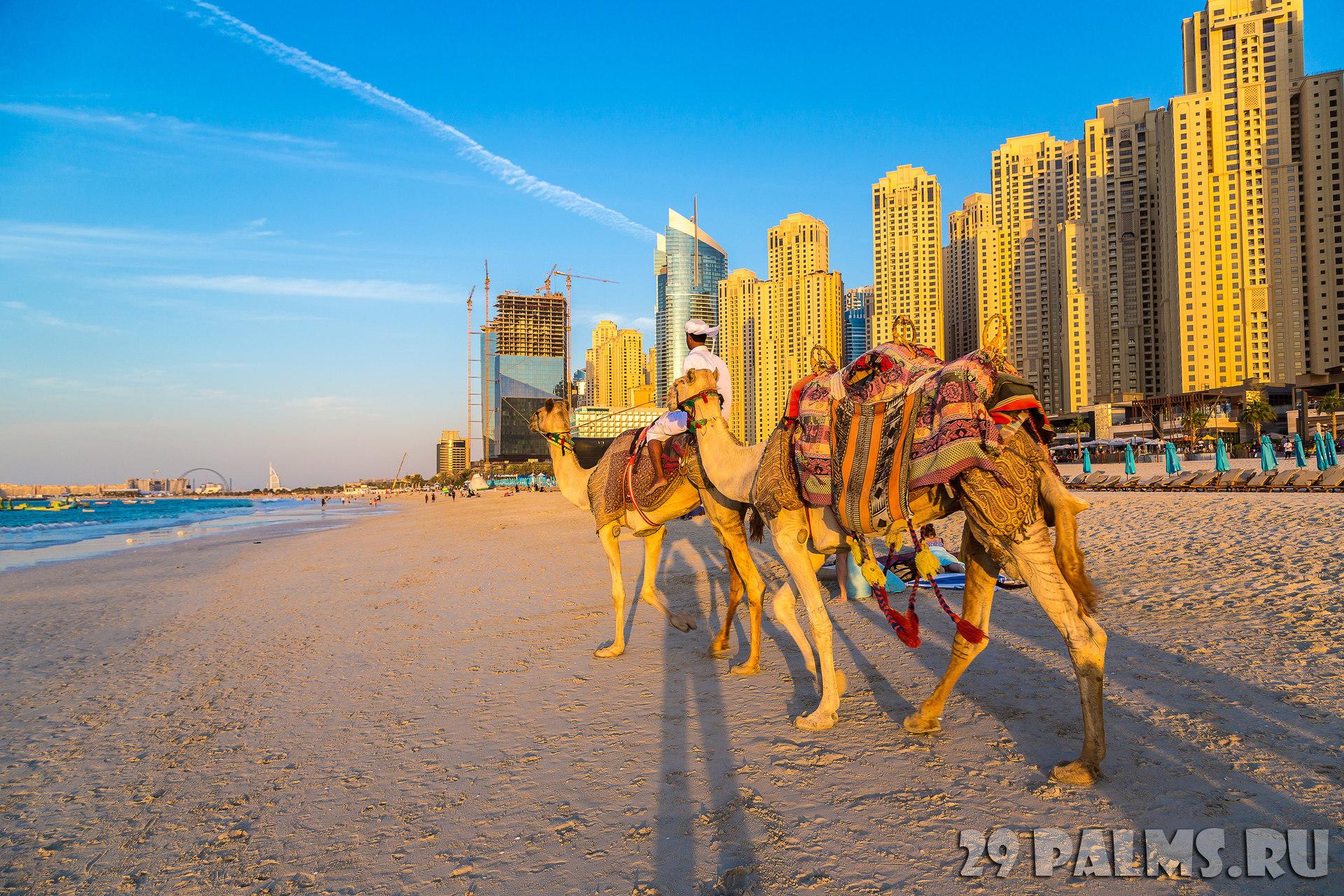 Дубай марина пляжи фото