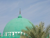 ОАЭ. Абу Даби. Green Mosque Cupola in Abu Dhabi. Фото Philip Lange - Depositphotos