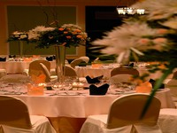 Movenpick Resort & Spa Dead Sea 5. Grand Ballroom Gala Dinner