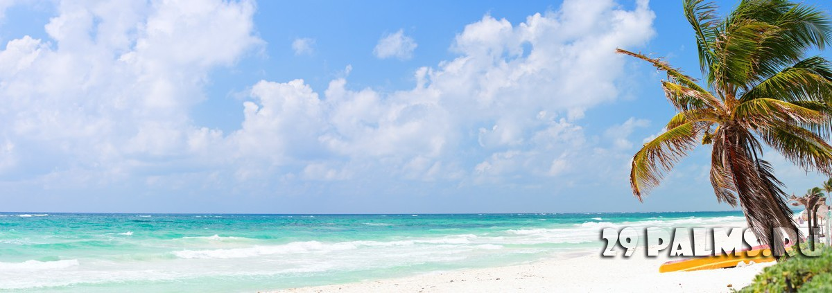 Perfect Caribbean beach in Tulum Mexico. Фото shalamov - Depositphotos