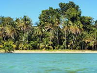 Landscape of tropical beach with coconut trees, Mexico. Фото vilainecrevette - Depositphoto