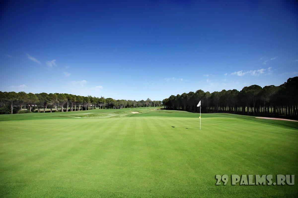 гольф поля