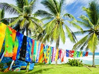 Барбадос. Typical fabrics, Bathsheba, East coast of Barbados, Caribbean. Фото Richard Semik - Depositphotos