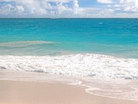 Барбадос. A beautiful pink sand beach on the Caribbean island of Barbados. Фото Verena Matthew - Depositphotos
