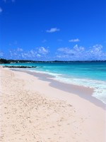 Барбадос. Beautiful Dover Beach on the Caribbean island of Barbados. Фото Jason Ross - Depositphotos