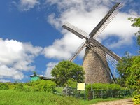 Барбадос. The Morgan Lewis Mill in Barbados was the last working mill on the island and was believed to be built in 1727. Фото Verena Matthew - Depositphotos
