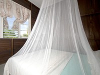 Bedroom with mosquito net in budget guest house bequia. Фото Robert Lerich - Depositphotos