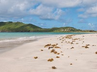 Сент-Люсия. Deserted sandy beach at Vieux Fort, Saint Lucia. Фото Luis Santos - Depositphotos