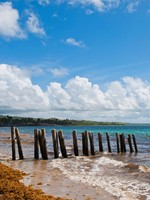 Сент-Люсия. Old wooden pier stilts on a deserted beach at Vieux Fort, Saint Lucia. Фото Luis Santos - Depositphotos