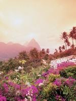 Сент-Люсия. Caribbean, St. Lucia, Pitons, view from La Haut Plantation bougainvillea in foreground. Фото Philip H. Coblentz - Depositphotos