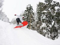 Панорама горнолыжного курорта. Snowboarder on fresh deep snow. Фото benis arapovic - Depositphotos