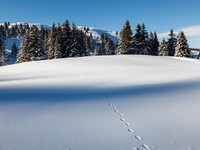 Ski Resort Megeve, French Alps, France. Фото Andrey Omelyanchuk - Depositphotos
