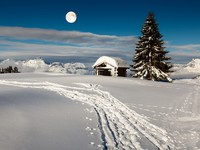 Full Moon above Small Hut and Fir Tree on the Top of the Mountain in Megeve, French Alps. Фото Andrey Omelyanchuk - Depositphotos