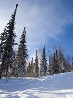 Slope for freeride skiing. Фото VadimPP - Depositphotos