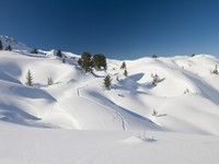 Almost untouched powder snow landscape, ski resort La Plagne - French Alps, Savoy. Фото hopsalka - Depositphotos