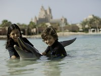 ОАЭ. Дубай. Atlantis, The Palm - Marine & Waterparks - Dolphin Bay - Dolphin Encounter