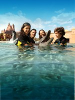 ОАЭ. Дубай. Atlantis, The Palm - Marine & Waterparks - Dolphin Bay - Family Shot