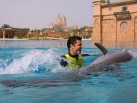 ОАЭ. Дубай. Atlantis, The Palm - Marine & Waterpark - Dolphin Bay - Atlantis Dolphin Adventure