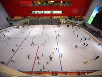 ОАЭ. Дубай. Дубай Молл. Big covered skating-rink in Dubai Mall. Фото Pavel Losevsky - Depositphotos