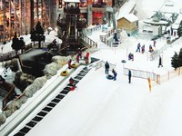 ОАЭ. Дубаи. Emirates Mall. Ski Dubai