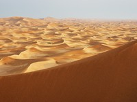 ОАЭ. Абу Даби. Sand dunes of the arabian desert. Фото Observer - Depositphotos