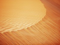 ОАЭ. Абу Даби. Rolling sand dunes of the Arabian desert. Фото Sophie_James - Depositphotos
