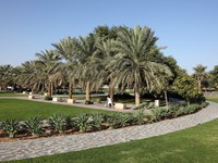 ОАЭ. Аль Айн. Park in Al Ain, United Arab Emirates. Фото philipus - Depositphotos