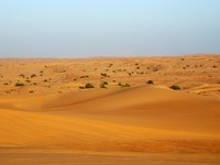 ОАЭ. Пустыня Руб-эль-Хали (Rub' al Khali).  UAE. Фото danielphoto - Depositphotos