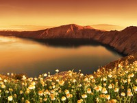 Греция. Санторини. Sunrise Wildflowers on Santorini. Awaken. Фото Ben Goode - Depositphotos