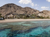 Израиль. Эйлат. Coral formations on the beaches of Eilat. Фото Alberto Arochas - Depositphotos
