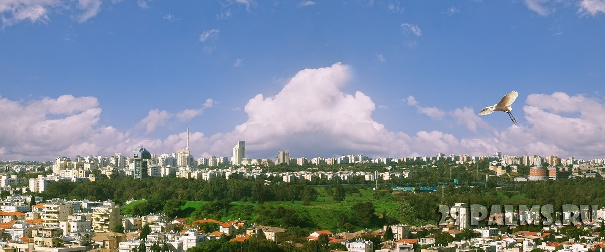 Израиль. Тель-Авив. Panorama of morning Tel Aviv from Ramat Gan Israel. Фото milika Depositphotos