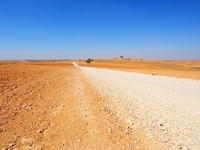 Израиль. Lonely Road In The Negev Desert, Israel. Фото George Kuna - Depositphotos