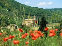 Италия. Тоскана. San antimo abbey tuscany. Фото IS_2 - Depositphotos