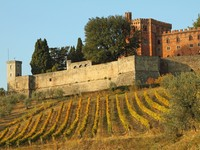 Италия. Тоскана. Castle of Brolio and vineyards in Chianti. Фото Malgorzata Kistryn - Depositphotos